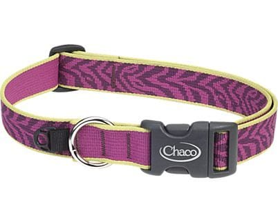 bbd8a7641e1e Chaco Dog Collar and Leash Review - Active Gear Review