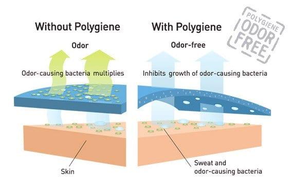 Polygiene How it Works
